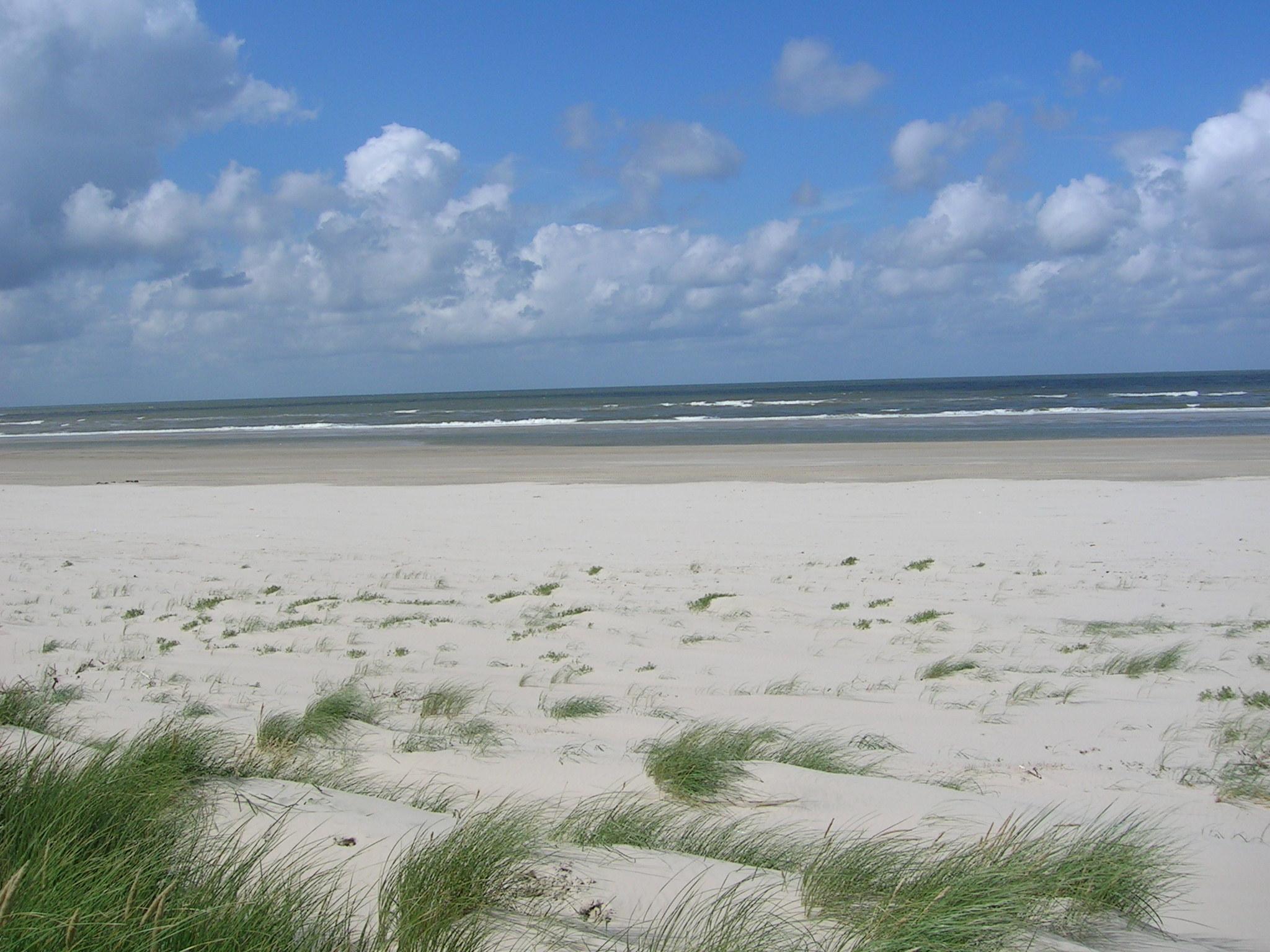 Am Strand Süße Boys ficken am Strand, nach